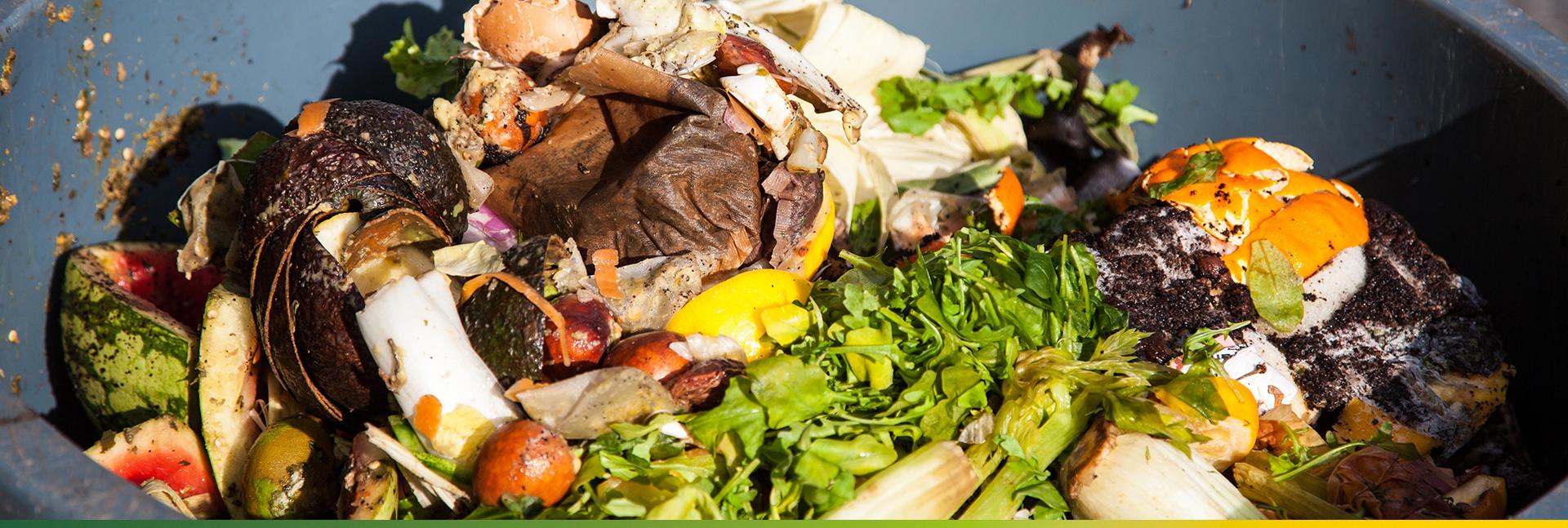 GFL Zero Carbon - Food Waste